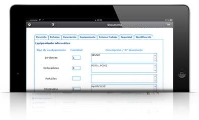 Introduce datos de consultoria lopd en el cliente